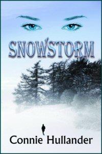 Snowstorm-2x3
